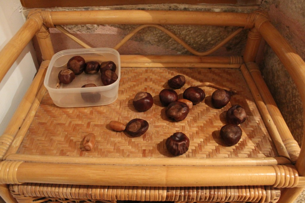 Le tour de France des marrons (certains collectionnent bien les petites cuillères ou les dés...) !