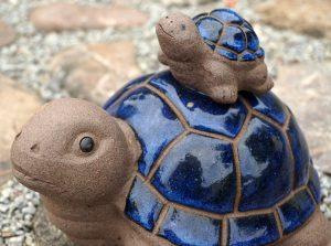 turtles-1543111_1920